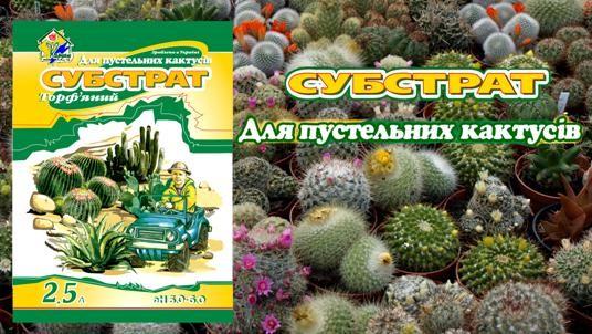 Substrat kaktus